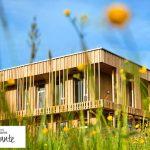Las construcciones sostenibles: el éxito de las grandes empresas